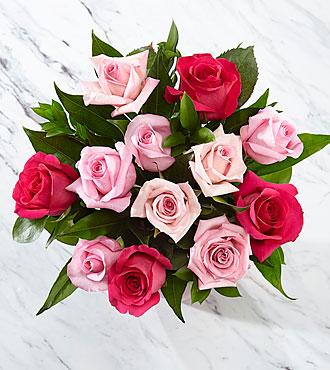 1 Dozen Pink Roses - No Vase
