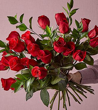 Red 24 Long Stem Roses - VASE INCLUDED