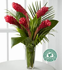 Return to Paradise Bouquet - VASE INCLUDED