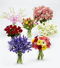Flowers of the Month - 6 Months with Vase