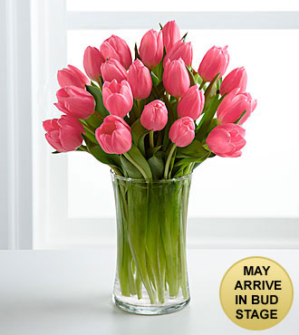 Pink Prelude Tulip Bouquet - 25 Stems - VASE INCLUDED
