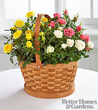 The FTD® Rose Garden Basket by Better Homes and Gardens®