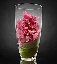 Spirited Luxury Orchid Bouquet - VASE INCLUDED